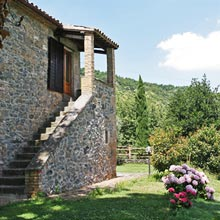 Villa il Leccio Country House rent in Umbria - External