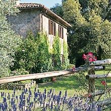 Villa il Leccio Country House rent in Umbria - Esterno